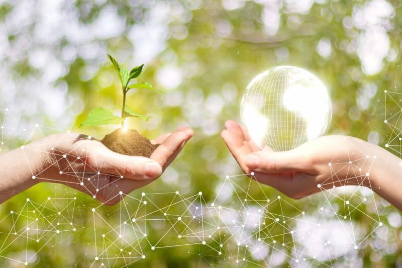 nachhaltige-entwicklung