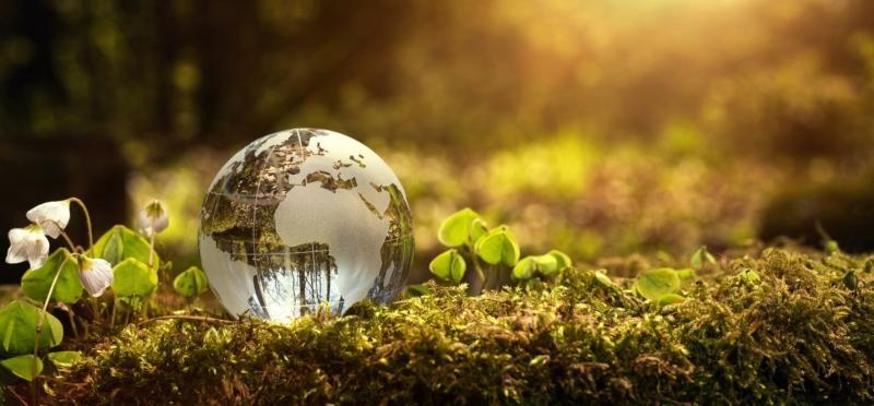 nachhaltiges-geschaeftsmodell-umweltauflagen