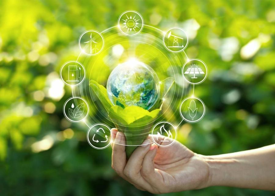 nachhaltigkeit-sparen-sie-mit-unseren-nachhaltigen-produkten-co2-ein