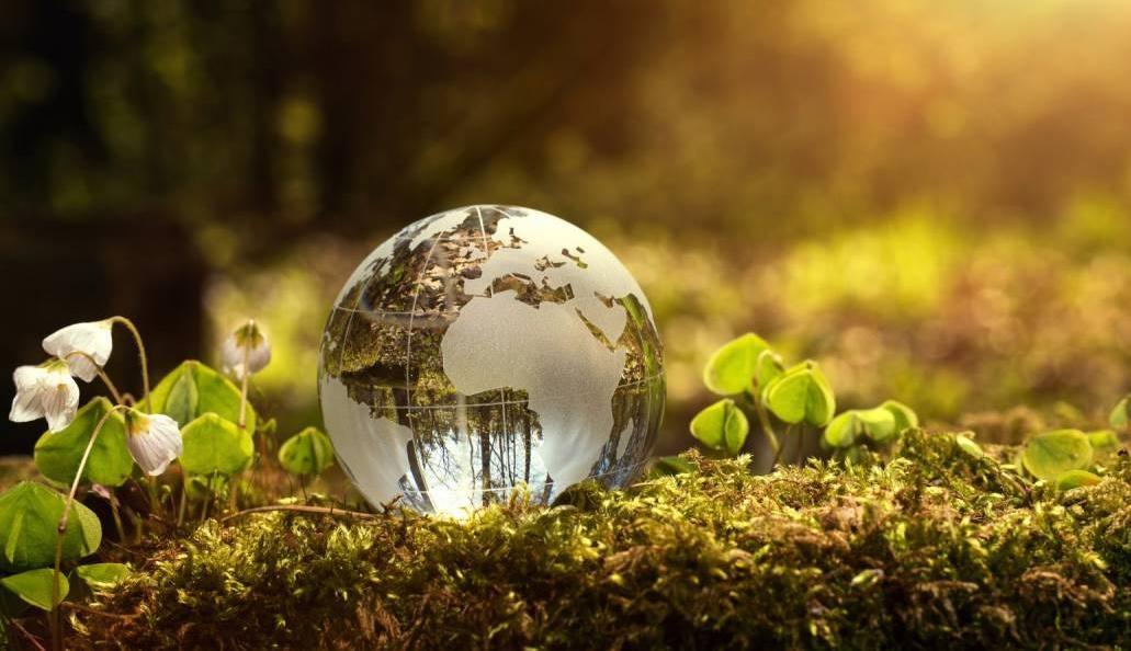 Symbolbild grüne Erde